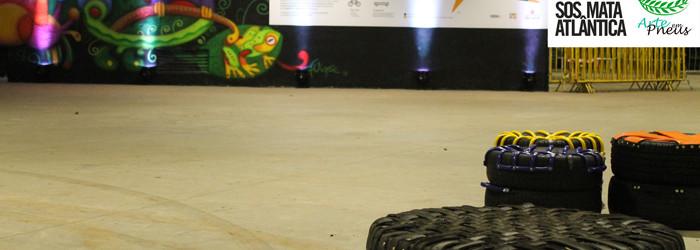 Arte em Pneus no Viva Mata/SOS Mata Atlântica Parque do Ibirapuera SP